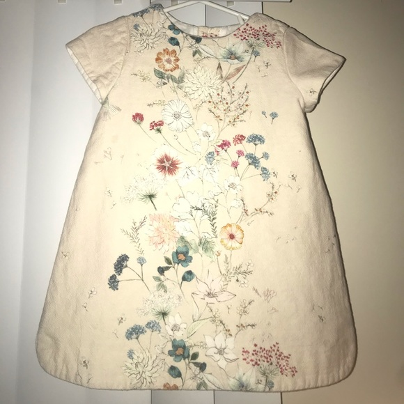Zara Other - Zara Babygirl Floral Dress